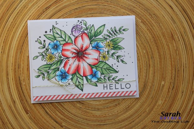 TheCraftingLife_Concord-and-9th-Spring_Hello-Lovely_Pink